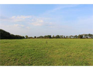 Main image of Balinglen , Tara Hill, Wexford