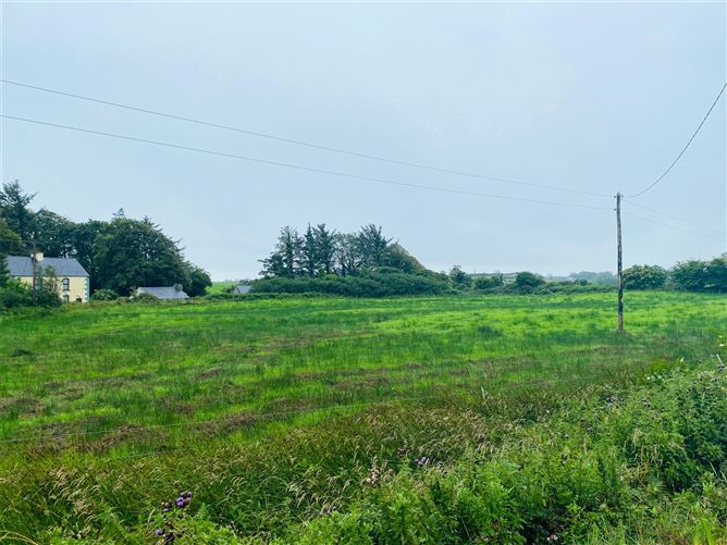 Main image for Lot 1, 1.25 Hectares On Folio CE28356, Kilmacduane West, Cooraclare, Co Clare