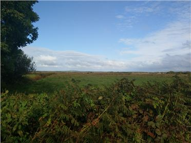 Photo of 10.95 Acres of Land Einagh, Moanmore, Kilrush, Clare
