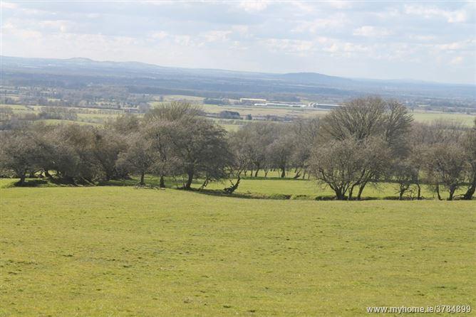 Land C57 Acres 23 Hectares Newtown Great Eadestown Naas Kildare